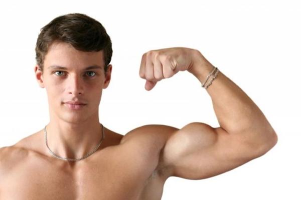 Descubre todo sobre como aumentar los músculos